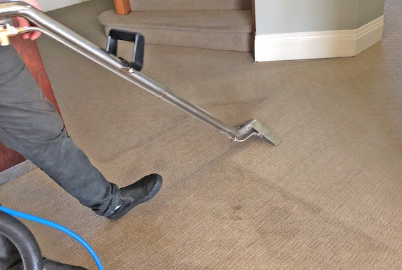 residential commercial carpet cleaning calgary